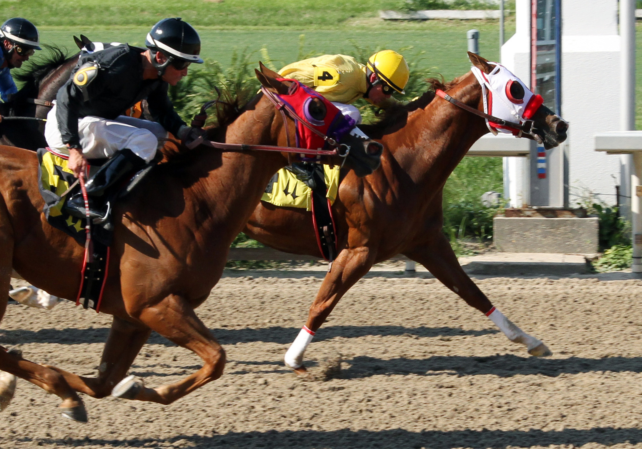 In this photo provided by Louisiana Downs, Brightlites Bigcity, right, with Jesse Chavis aboard, holds off Deadly Swingin Jess (6), front left, with John Hamilton up, to win the LQHBA Invitational Stakes horse race at Fair Grounds in New Orleans, Thursday, Sept. 12, 2013