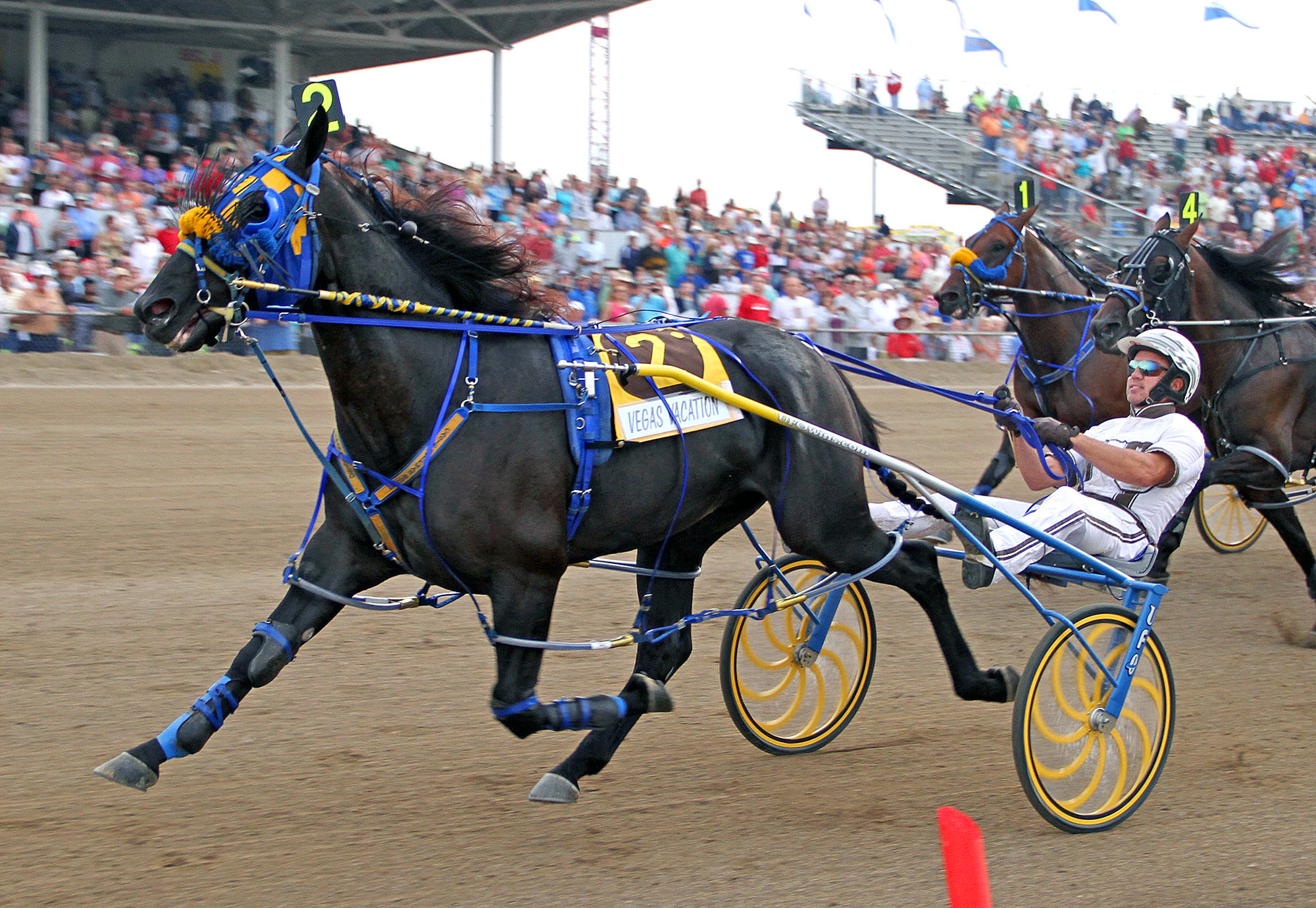 Driver Brian Sears crosses the finish line with Vegas Vacation to win the Little Brown Jug harness race for three-year-old pacers at the Delaware County Fairgrounds in Delaware, Ohio, Thursday, Sept. 19, 2013