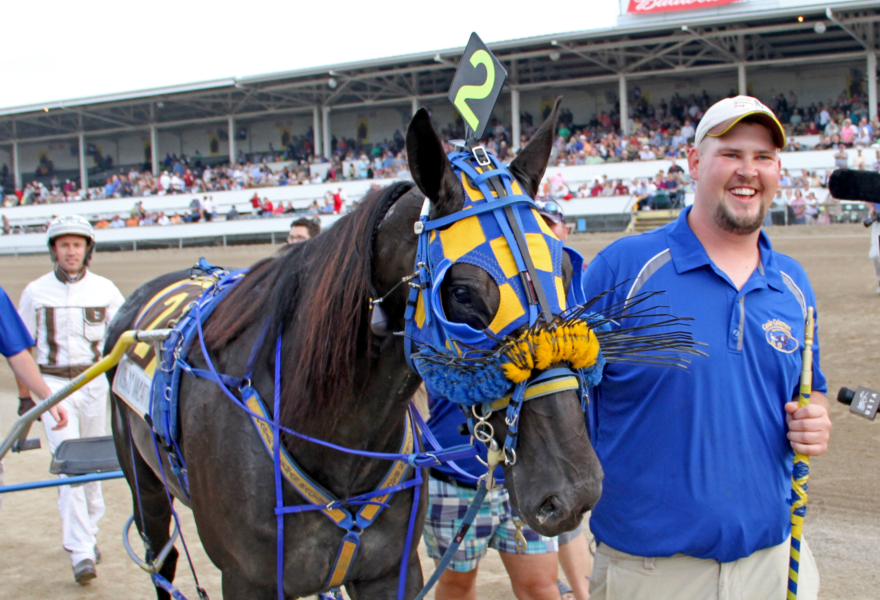 Second trainer Boyd Wilson leads Vegas Vacation back to the winner's circle as driver Brian Sears follows after winning the Little Brown Jug harness race for three-year-old pacers at the Delaware County Fairgrounds in Delaware, Ohio, Thursday, Sept. 19, 2013