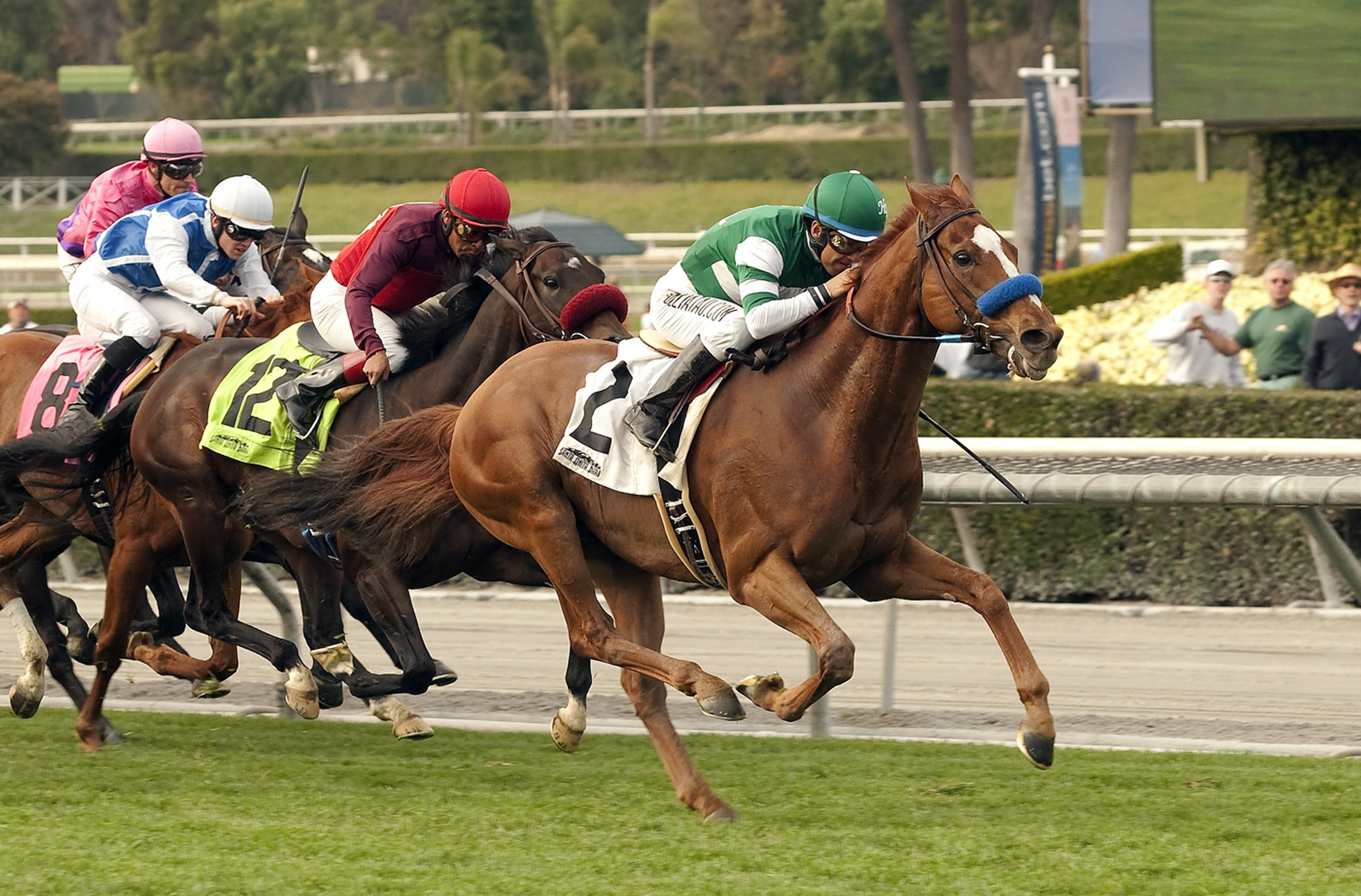 In this image provided by Benoit Photo, Irish-bred Vagabond Shoes, right, with Victor Espinoza aboard, wins the Grade II San Marcos Stakes horse race on Saturday, Feb. 8, 2014, at Santa Anita Park in Arcadia, Calif