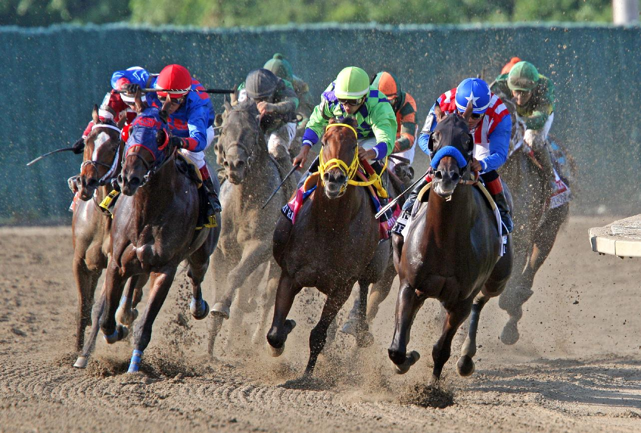 In a photo provided by Equi-Photo, Bayern, with Martin Garcia riding, right, leads the field through the final turn on the way to winning the $1 million Haskell Invitational horse race at Monmouth Park on Sunday, July 27, 2014, in Oceanport, N.J