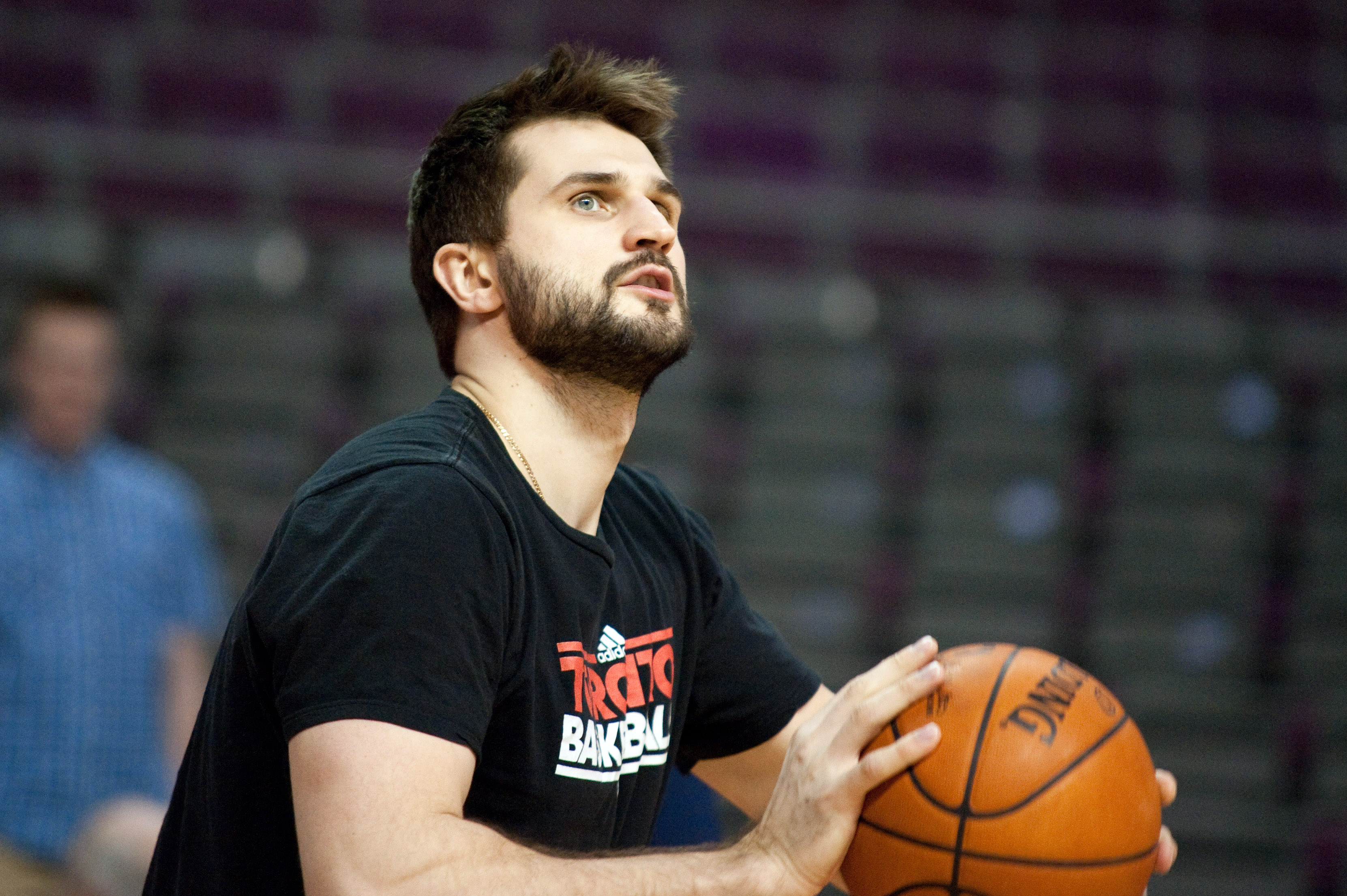 Linas Kleiza played in just 20 games for the Raptors last season. (USA Today Sports)