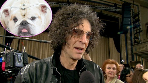 Howard Stern, inset: Bulldog Bianca -- Access Hollywood
