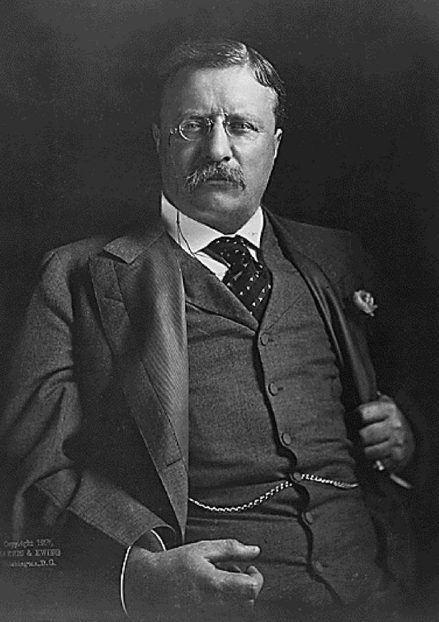 theodore roosevelt fearless essay
