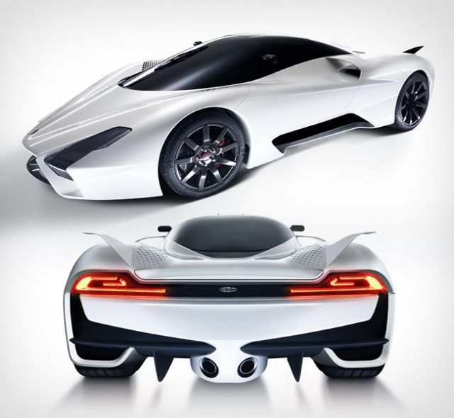 Ssc tuatara red