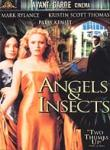 Poster of Angels & Insects