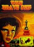Poster of The Brave One