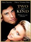 Poster of Two of A Kind