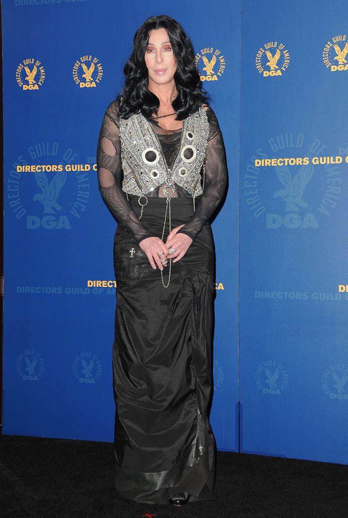 62nd Annual Directors Guild Awards 2010 Cher