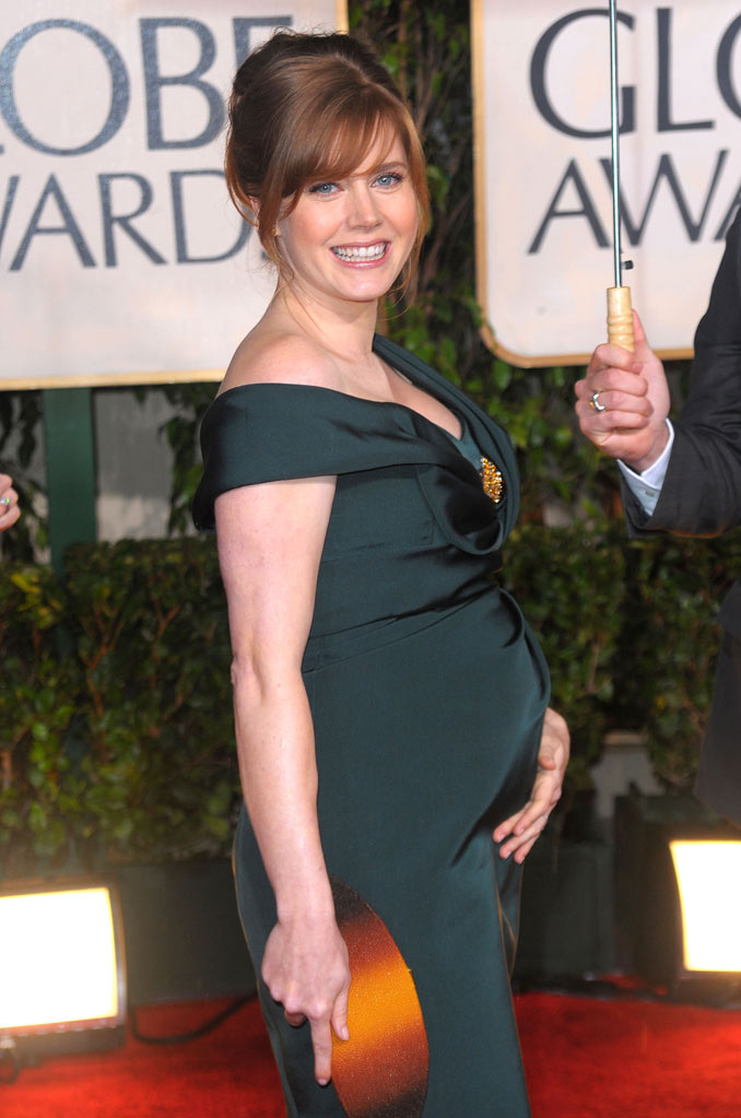 67th Annual Golden Globe Awards 2010 Amy Adams