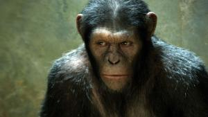 Box Office Report: 'Rise of the Planet of the Apes' Scores Big with $54 Mil Opening