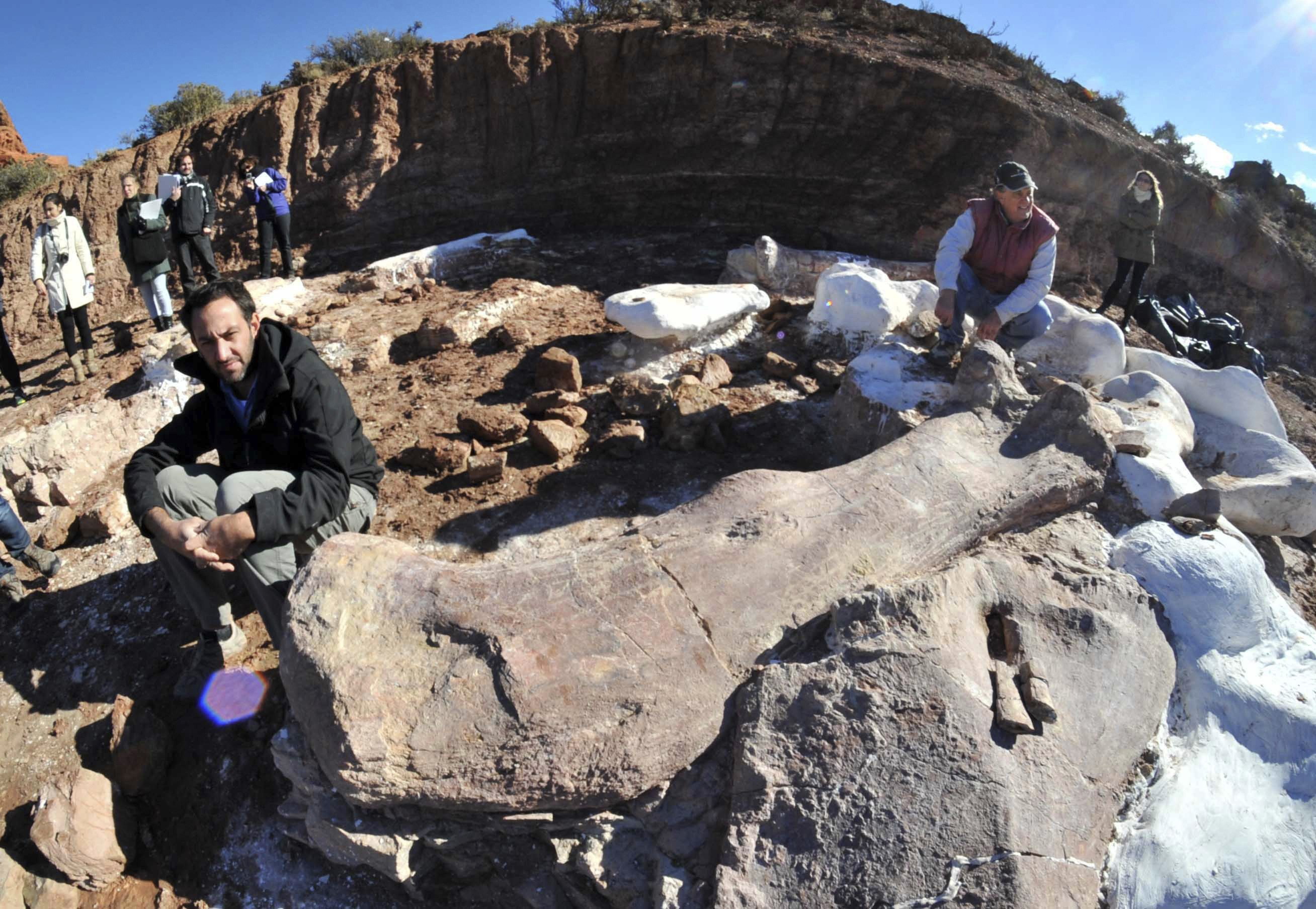 Paleontologists Jose Luis Carballido (L) and Ruben Cuneo pose next to the bones of a dinosaur at a farm in La Flecha, west of the Argentina's Patagonian city of Trelew, May 16, 2014. Paleontologists have unearthed in Argentina what they say is the largest set of remains of a dinosaur ever found to date. According to Carballido and Cuneo, the fossils are that of a sauropod and preliminary tests dates the fossils at some 90 million years old. Picture taken May 16, 2014. REUTERS/Daniel Feldman (ARGENTINA - Tags: ANIMALS SCIENCE TECHNOLOGY)