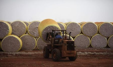 Exclusive: U.S. to pay $300 million to end Brazil cotton trade dispute - officials