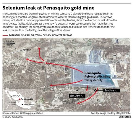 Goldcorp struggles with leak at Mexican mine