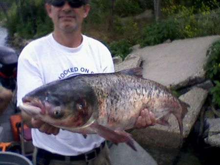 Invasive Asian carp found in waterway beyond Great Lakes barriers