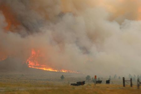 Battle intensifies to contain Montana wildfire, largest in U.S.