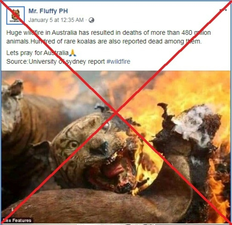 Burned tigers, rescued kangaroos: Australia bushfire disinformation