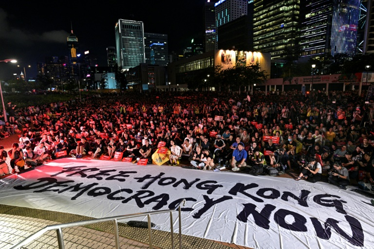 Hong Kong protesters urge G20 to raise plight with China
