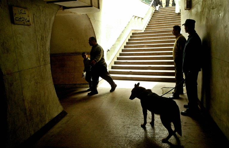 No more US sniffer dogs to Egypt, Jordan after deaths