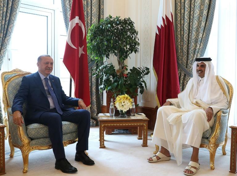 Turkeys Erdogan in Qatar calls for swift end to Gulf crisis
