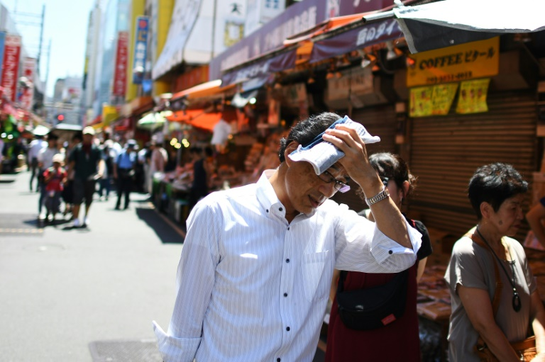 Five-year period ending 2019 set to be hottest on record