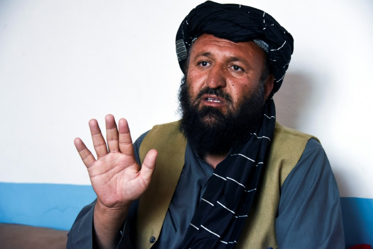 Taliban supporters cheer US withdrawal plans