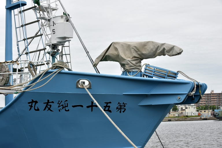 Whaling ships set sail as Japan resumes commercial hunts