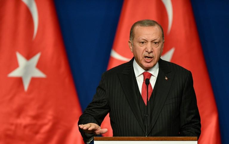 Turkeys Erdogan in Qatar on first Arab trip since Syria offensive