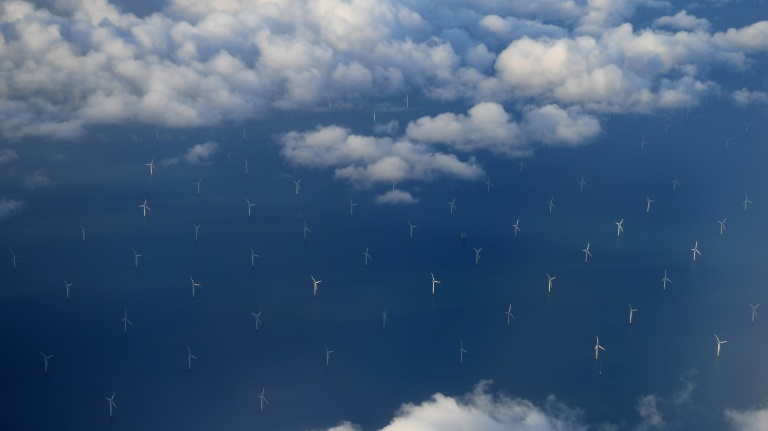 Renewables overtake hydrocarbons in UK electricity generation: study