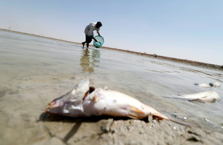 More Basra water crises unless Iraq govt fixes failures: HRW