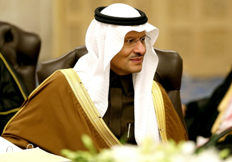 Saudi king tightens grip with promotion of another son