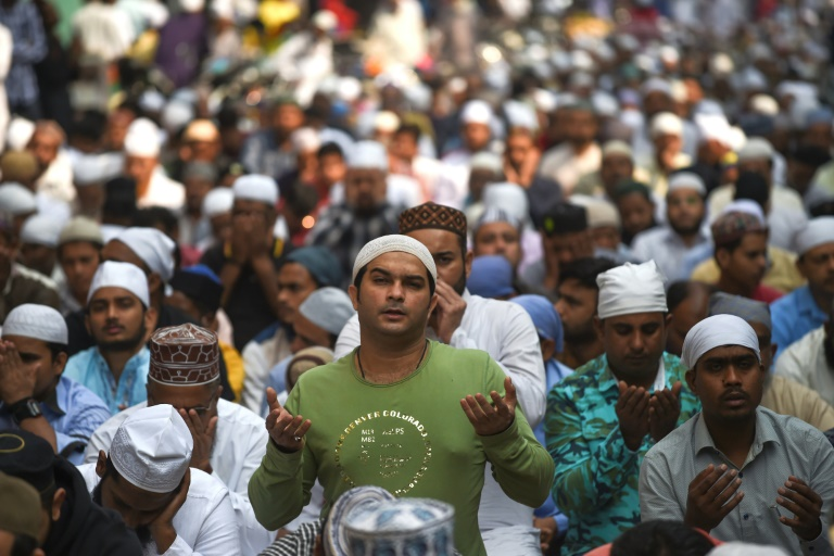 Giant new rallies slam Indian governments citizenship law