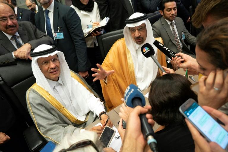OPEC kingpin Saudi Arabia replaces energy minister: state media