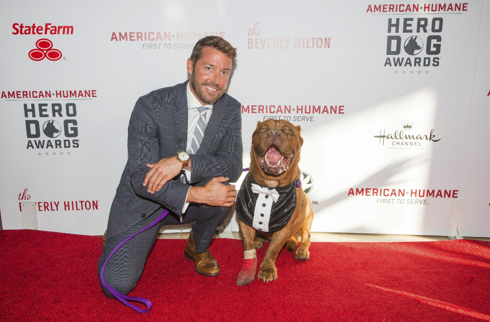 Hooch, an abused French mastiff, is Hero Dog of the Year