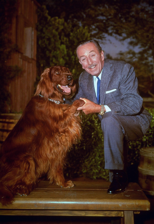 Walt Disney experts rebut dogged anti-Semitic allegations
