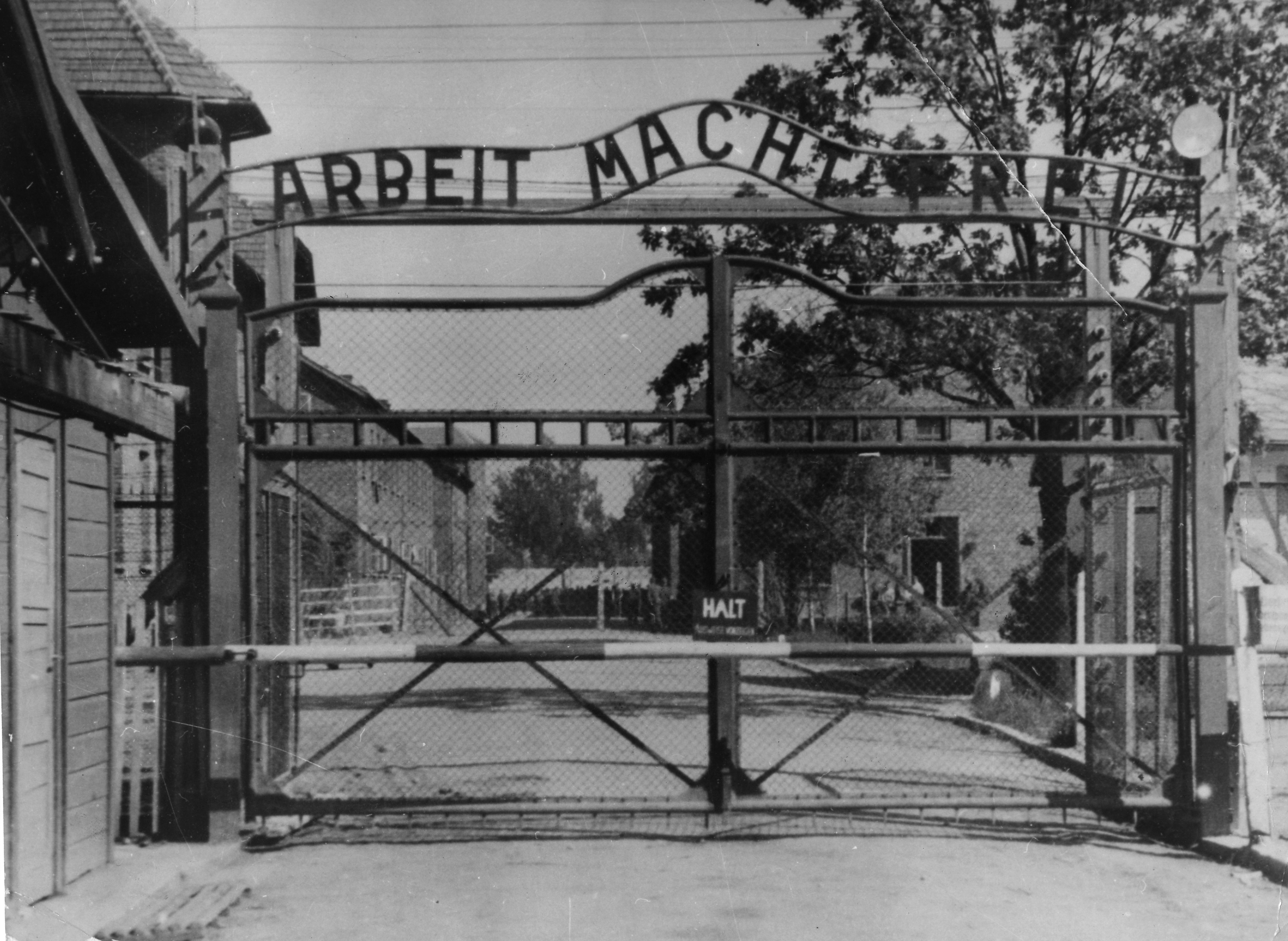 Nazi war crimes suspect dies before facing justice