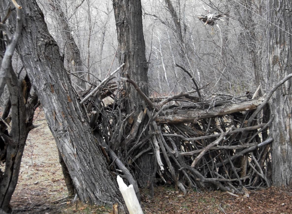 This photo released on Monday April 23, 2012 by the Utah County Sheriff's Department shows a crude shelter made of dead tree limbs housing booby traps found in a Provo Canyon, Utah. Two men have been arrested on suspicion of setting the traps and were booked Saturday into the county jail for investigation of misdemeanor reckless endangerment. (AP Photo/Utah County Sheriff Department)