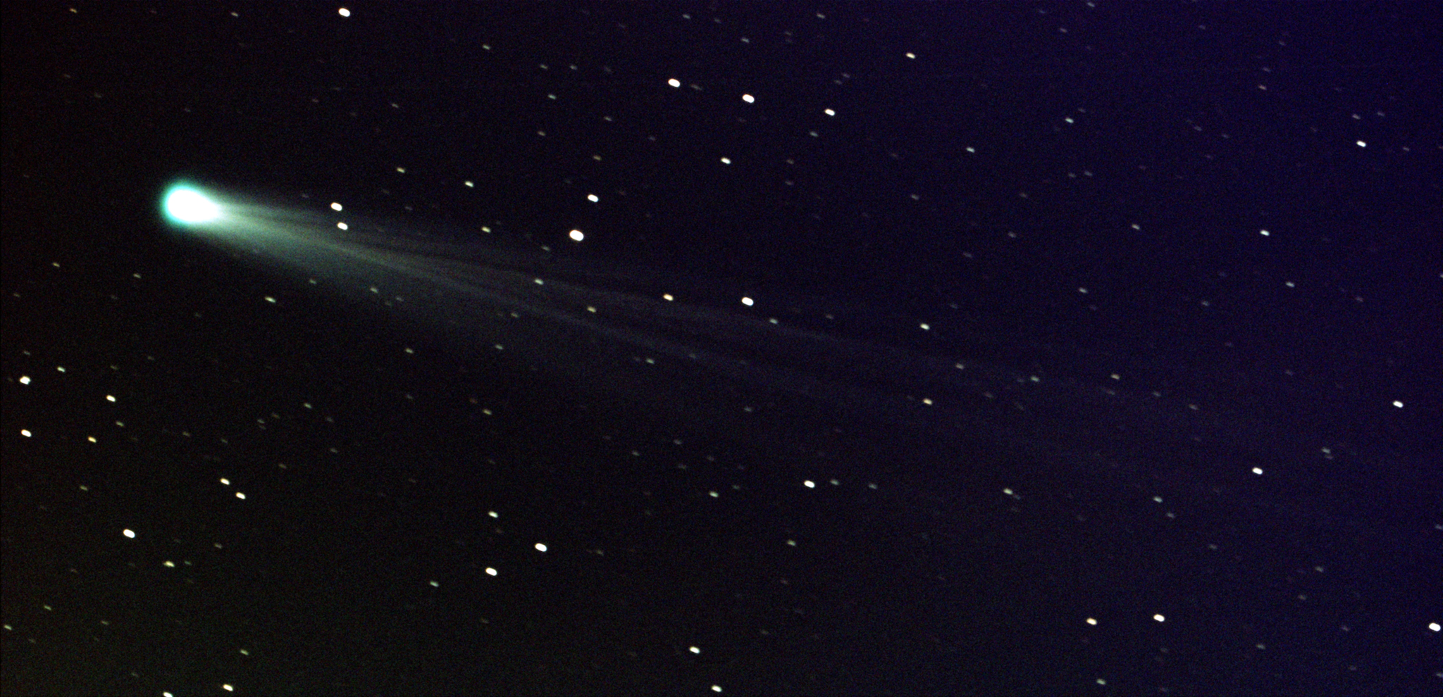 In this photo provided by NASA, Comet ISON shows off its tail in this three-minute exposure taken on Nov. 19, 2013 at 6:10 a.m. EST, using a 14-inch telescope located at the Marshall Space Flight Center. The comet is just nine days away from its close encounter with the sun; hopefully it will survive to put on a nice show during the first week of December. At the time of this image, Comet ISON was some 44 million miles from the sun -- and 80 million miles from Earth -- moving at a speed of 136,700 miles per hour. (AP Photo/NASA, Aaron Kingery)
