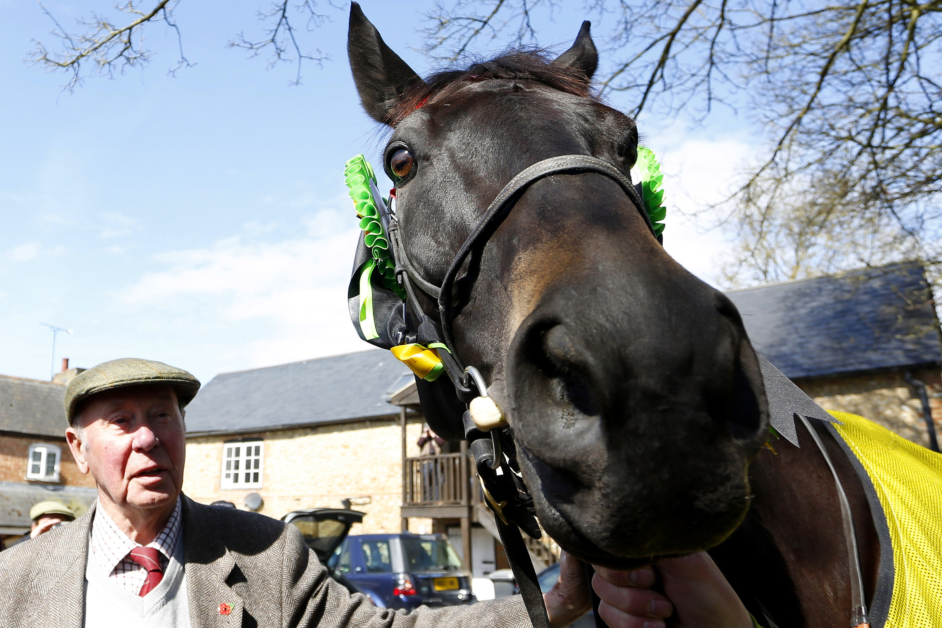 best horse to win grand national