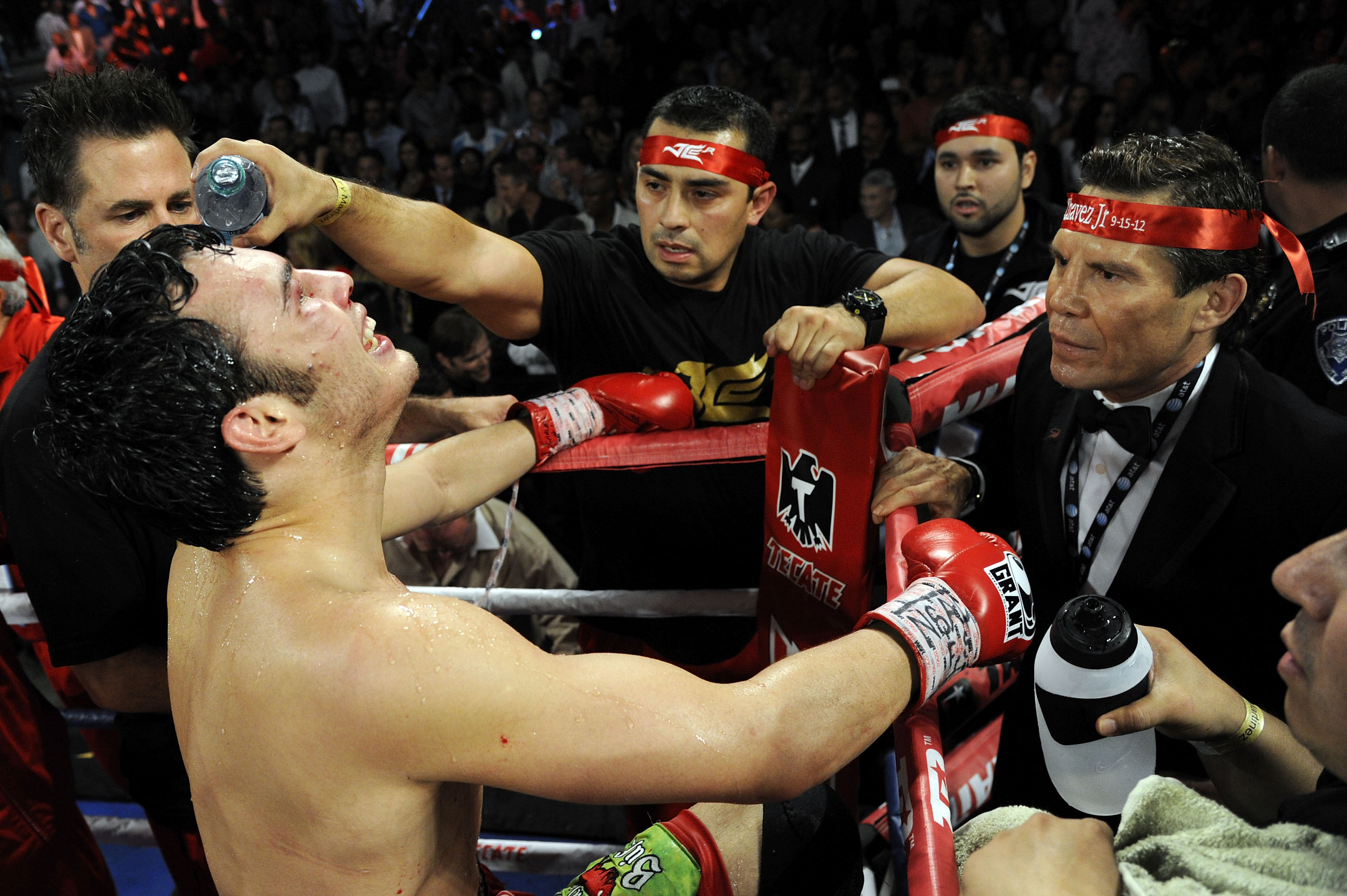 Julio Cesar Chavez Jr Mother