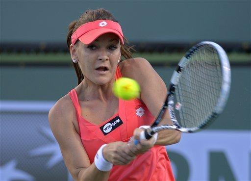Novak Djokovic, Andy Murray, Mardy Fish earn wins