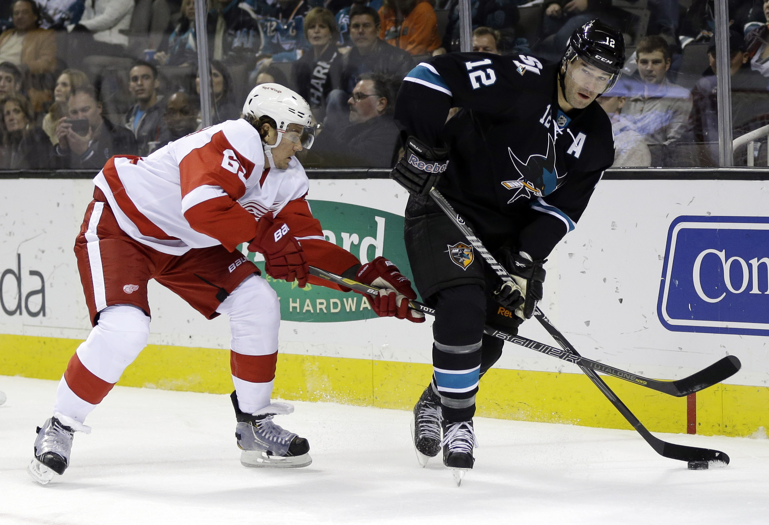 Sharks beat Red Wings 4-1
