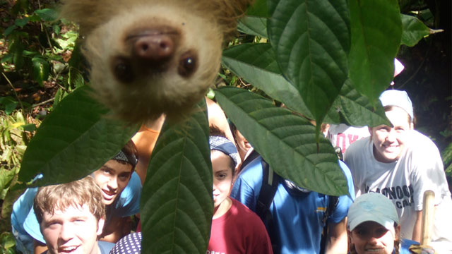 Sloth Photobomb: Furry Friend Creeps Into Picture (Image credit: Caters News Agency)