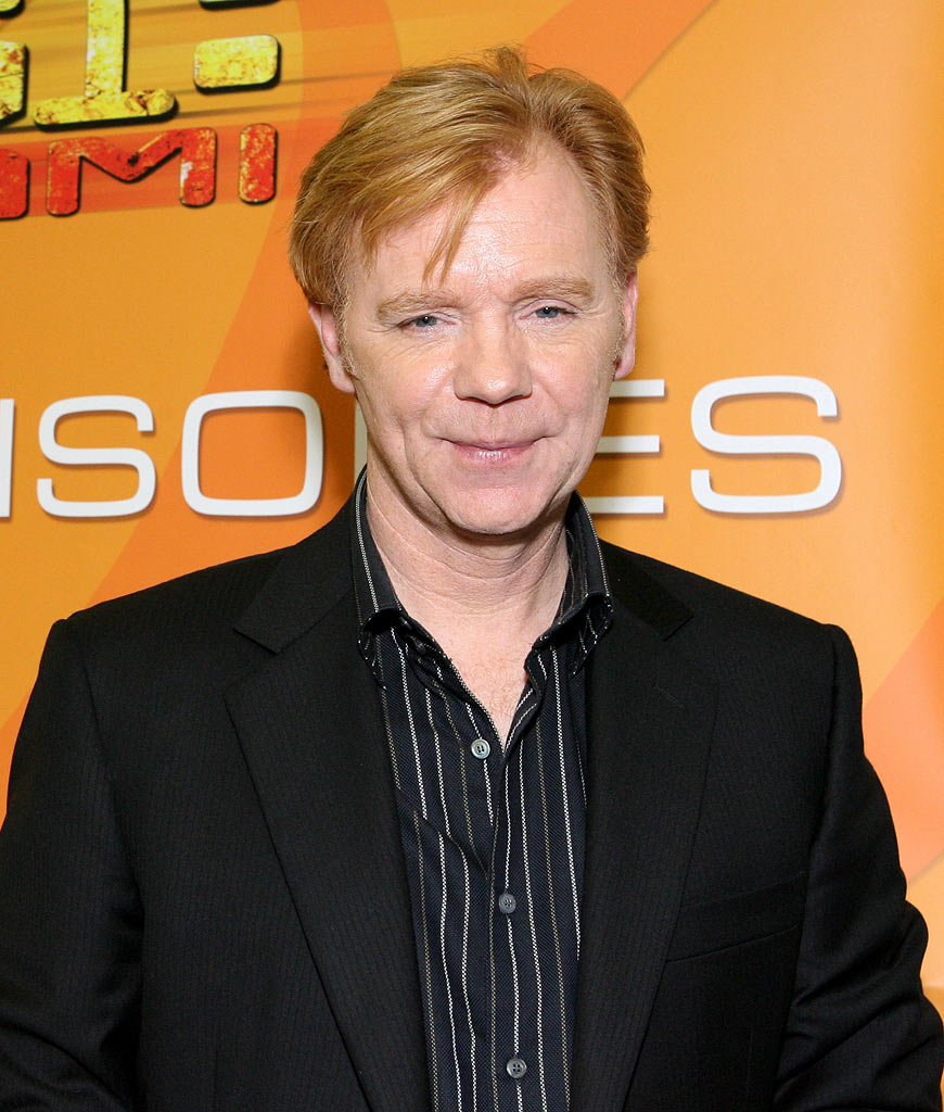 David Caruso at the CSI Miami 100th Episode Celebration. August 17, 2006