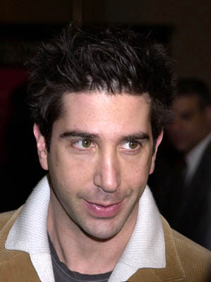 Premiere: David Schwimmer at the Hollywood premiere for The Dancer Upstairs - 1/24/2002