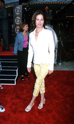 Premiere: Kim Delaney at the Mann Village Theatre premiere of 20th Century Fox's Me, Myself & Irene - 6/15/2000