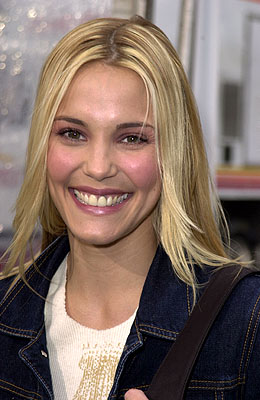 Premiere: Leslie Bibb at the Mann Chinese Theater premiere of Warner Brothers' See Spot Run - 2/25/2001