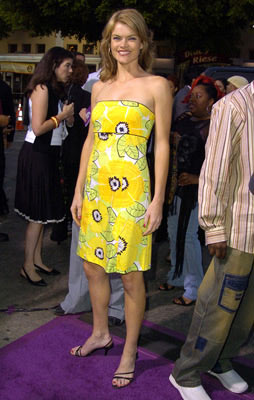 Premiere: Missi Pyle at the L.A. premiere of MGM's Soul Plane - 5/17/2004