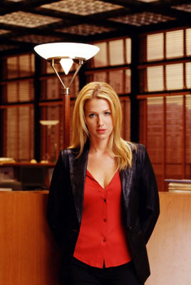 Poppy Montgomery CBS's Without a Trace