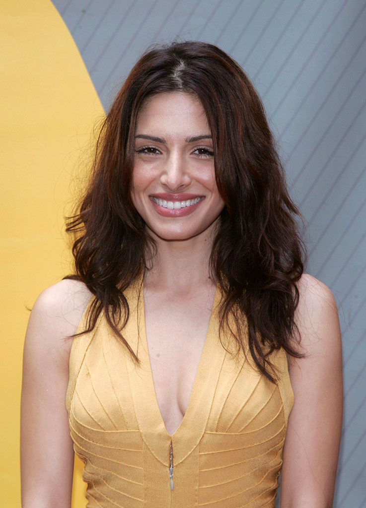 Sarah Shahi of Life at the NBC 2007 Upfronts.